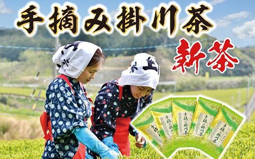 337 希少な「手摘み掛川茶」40g×5袋セット 深蒸し掛川茶  ※1新茶受付