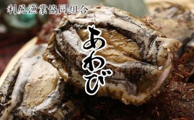 利尻漁業協同組合 「天然蝦夷あわび(冷凍) 2㎏」