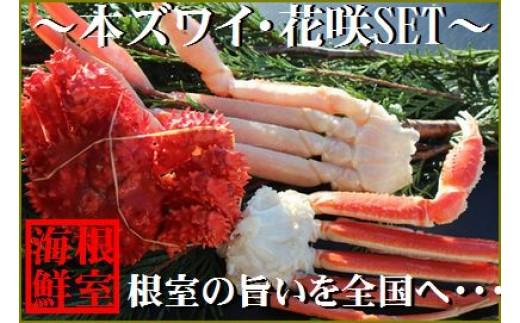 CA-19010 本ズワイガニと花咲ガニの食べ比べセット[449401]