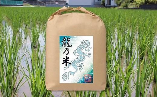Z888【龍乃米】H30収穫新米「いのちの壱」玄米10キロ(完全無農薬栽培)【先行予約】【限定50名】
