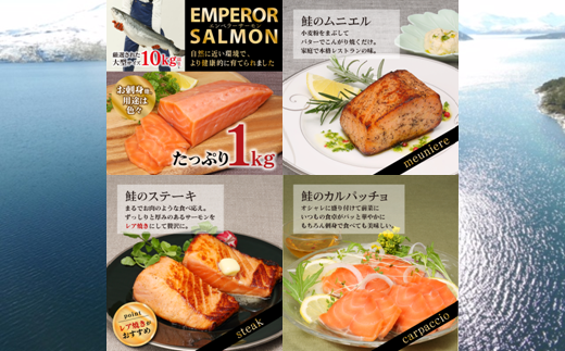 [№5723-0248]エンペラーサーモン【1kg】