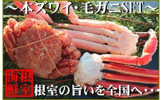 CA-19009 本ズワイガニと毛ガニの食べ比べセット[449400]