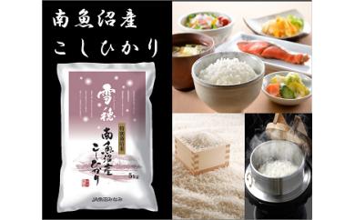 【29年産】味を追求した「特別栽培米雪穂」5kg