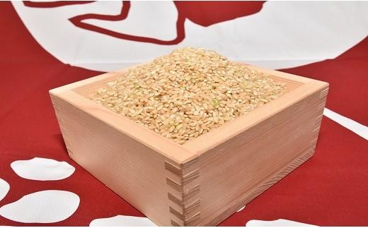 愛知県産あいちのかおり玄米10kg定期便 H017-018