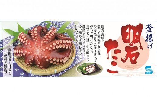 [№5546-0067]明石蛸と明石鯛の前浜セット2