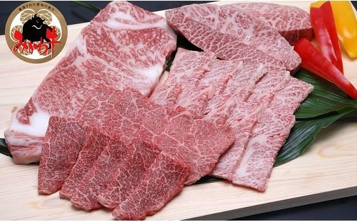 黒毛和牛みかわ牛A5等級 食べくらべ焼肉セット たっぷり1kg(サーロイン、ミスジ、カルビ、ロース)