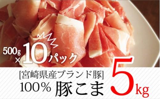 B-236 <ブランド豚>大容量!宮崎県産豚 こま肉 合計5kg(500g×10パック)【5,000pt】