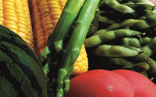 C31 季節の野菜おすすめセット