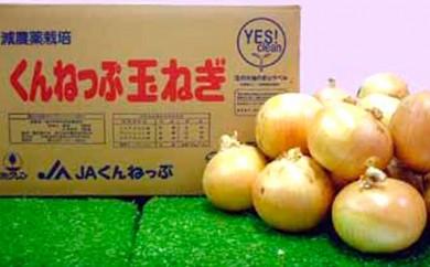 [№5726-0189]JAきたみらい「訓子府産減農薬たまねぎ」