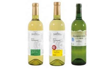 [№5715-0153]池田町産のぶどうを使用したワイン(豪華3本セット)