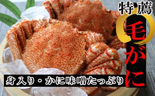 CC-34001 【北海道根室産】浜ゆで毛ガニ姿(500g~650g前後×2尾)[344346]