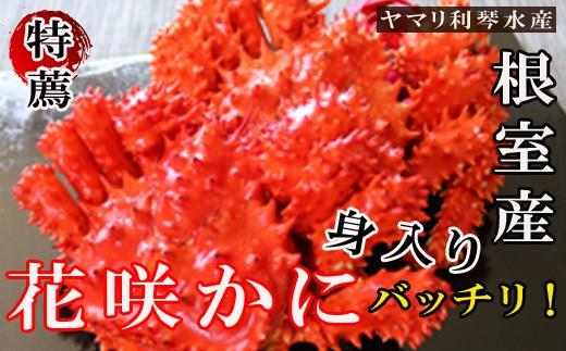 CC-34007 【北海道根室産】浜ゆで花咲ガニ姿600g前後×3尾[344351]
