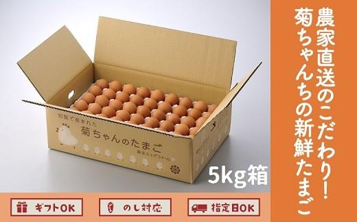042-05 農家直送のこだわり!菊ちゃんちの新鮮たまご 5kg箱