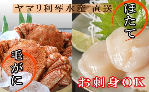 CC-34008 【北海道根室産】毛ガニ400~550g前後×2尾、ほたて貝柱200g