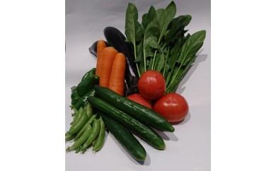 みやこの旬の野菜(冬)E