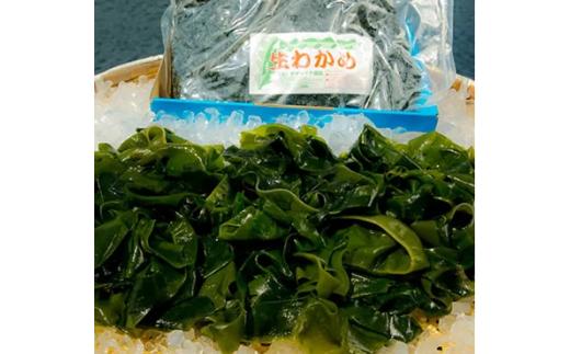 010032 新物一番採り袋わかめ(塩蔵わかめ)1kg