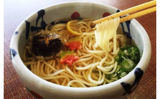 08-12国東細打ちうどん「走り水」※10食分/温・冷つゆ付き