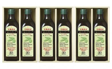 [№5735-0344]有機栽培エキストラバージンオリーブオイル シングル450g 6本入り