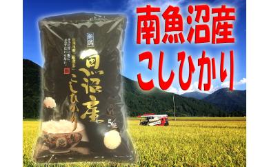 【頒布会】南魚沼産 コシヒカリ【10kg×全6回】