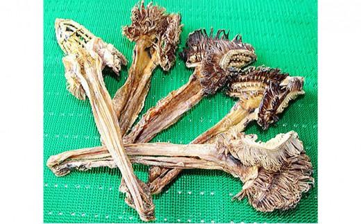 [№5901-0493]北海道礼文島産たらおさ(鱈のえらと胃袋を干した物)5本(500g以上)