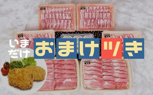 5489 【おまけ付き】鹿児島黒豚特盛Bセット3kg