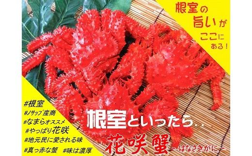 CA-05007 【北海道根室産】花咲がに5~6尾(計1.5kg以上)