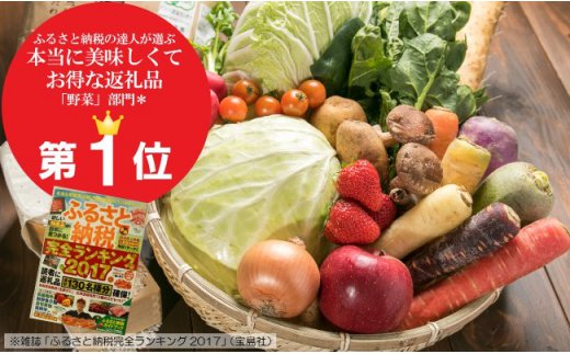 【定期便】いっぺ北上の野菜くってけでぇ~まんぞく野菜セット 6ヶ月