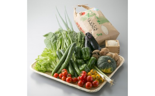D4 小浜市の旬の食材セット(野菜・米)[髙島屋選定品]