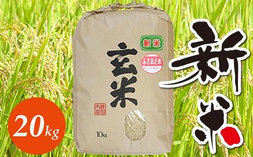 ☆☆平成30年 千葉県産「ふさおとめ」20kg(玄米)