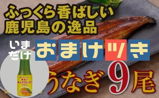 5804 【おまけ付き】鹿児島産特上うなぎ9尾!