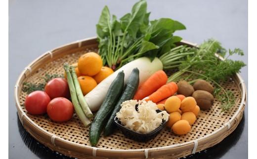 【D1-031】感謝特典付き!10月スタート!季節の野菜詰め合わせの定期便6回
