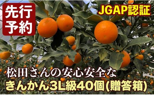 A-204 【予約受付中!】松田農場のきんかん 3L級40個詰 贈答箱入り【12月中旬より発送!】