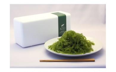 【定期便】海ぶどう レディースセット (10回)