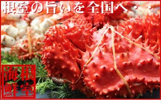 CD-19002 【北海道根室産】花咲ガニ(オスメス)食べ比べ4~6尾(計4kg)