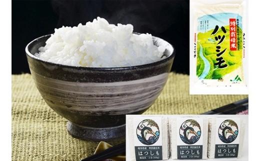 (40) 岐阜県産特別栽培米ハツシモ(5kg),キューブ米 3個