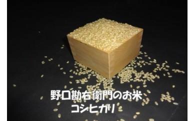 野口勘右衛門のお米 「安心栽培米(コシヒカリ)」玄米30㎏