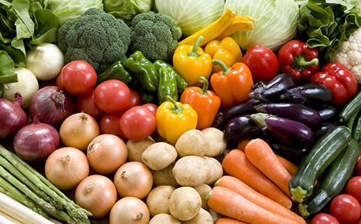 【3P】新鮮!旬野菜『高島さんちの採れたて野菜&加工品セット』 [D00324]