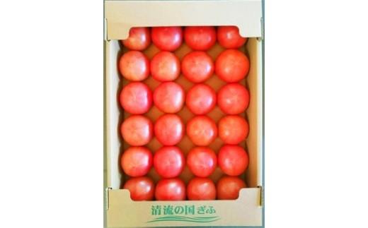 (43)トマト 桃太郎 L(約4kg)