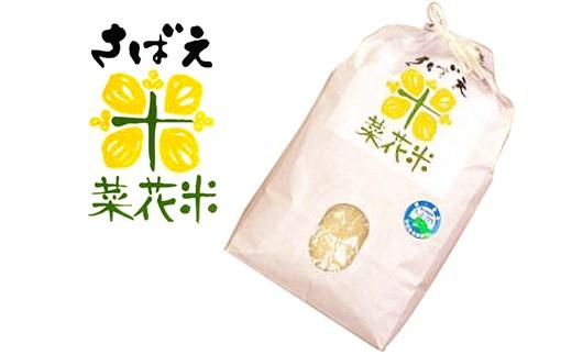 【3P】★コシヒカリ★自慢の鯖江ブランド米『 さばえ菜花米 5㎏』 [D00307]
