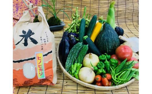 [№5545-0046]産地直送!新鮮とれたて夏野菜&ひのひかり10kg