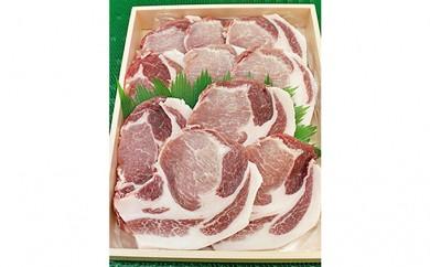 [№5541-0010]阿波市産豚肉とんかつセット 約900g(ロース約90g×5枚、肩ロース約90g×5枚)