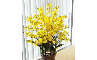 [№5809-2309]光触媒アートフラワー(造花)オンシジウム黄10本立