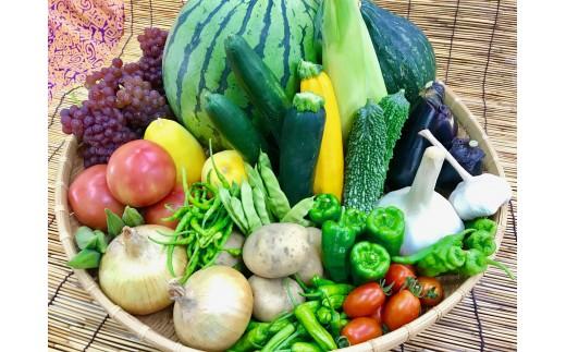 [№5545-0043]産地直送!新鮮とれたて夏野菜&フルーツセット