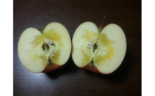 A22 りんご「葉取らずふじ」5kg(蜜入判定)