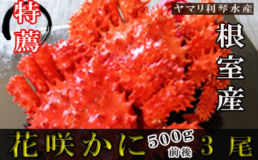 CB-34003 【北海道根室産】花咲ガニ500g前後×3尾