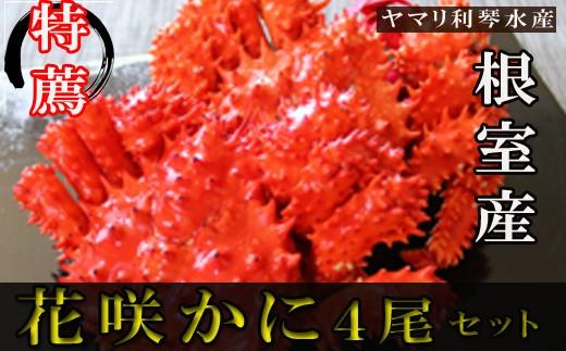 CA-34001 【北海道根室産】花咲ガニ400g前後×4尾