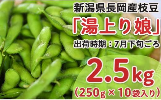 Z8-011新潟県長岡産枝豆2.5kg【湯上り娘250g×10袋入り】