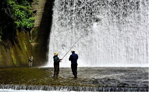 [04-306]渓流釣り体験付 ゲストハウスMASAGO宿泊体験(1泊2名様用)