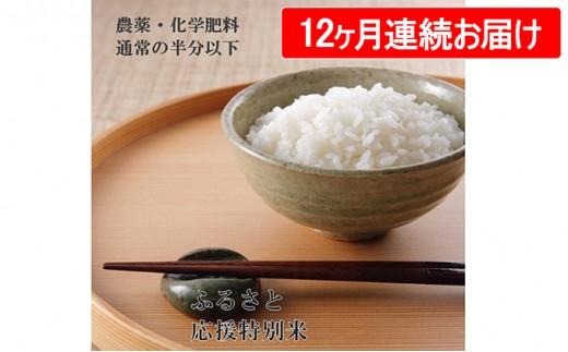 [№5899-0147]ふるさと応援特別米 こしひかり(BG無洗米)5Kg 12ヶ月連続