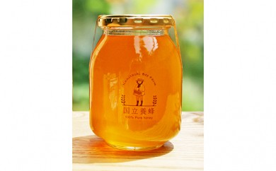 [№5903-0057]国立養蜂 季節の百花蜜